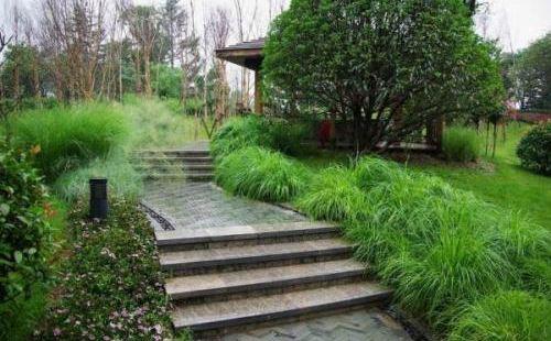 Lin Shanglin Park