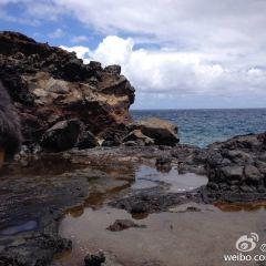 D.T. Fleming Beach Park User Photo