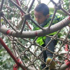 다람쥐숲 삼림공원 여행 사진