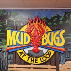 Mudbugs Cajun Seafood At The Loop User Photo
