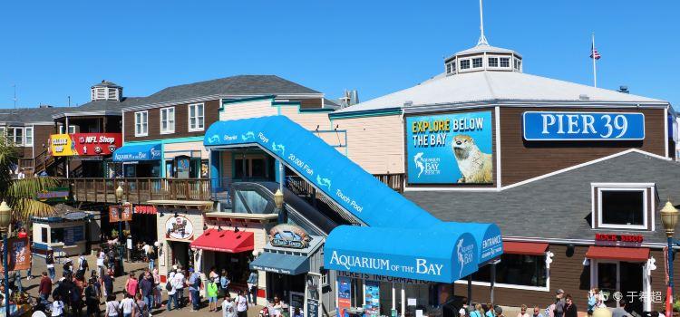 Aquarium of the Bay1