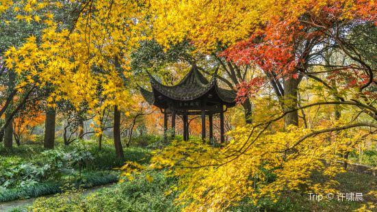 Hangzhou Botanical Garden