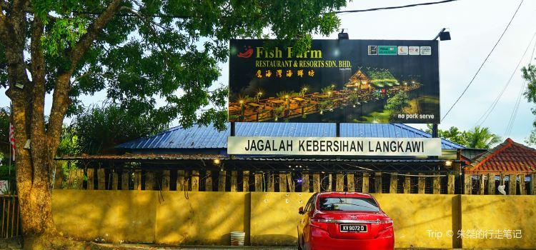 Langkawi Fish Farm Restaurant1