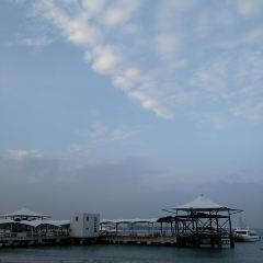 Ziyouzhe Yinxiang Haiyang Fenjiezhou Huwai Island User Photo