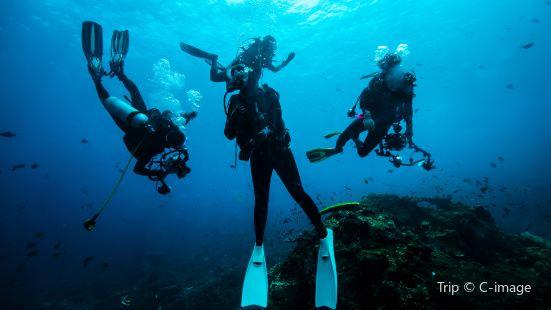 Nanwan Monkey Island Diving