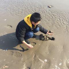진산쭈이(금산취) 어촌 여행 사진