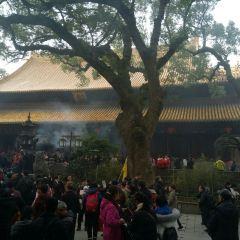 普濟禪寺用戶圖片