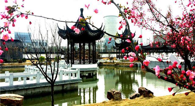 洋河酒廠(泗陽基地)工業旅遊區3