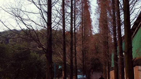 宜春濕地公園