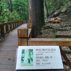 Hongdoushan Ecological Park User Photo