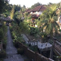 Ubud User Photo