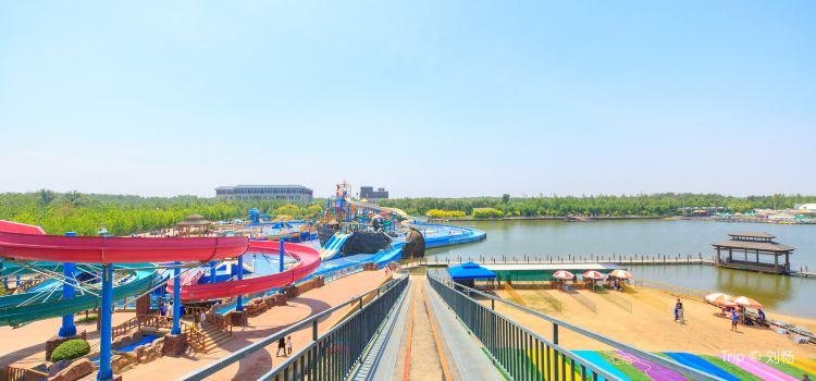 Yudao – Fish Island2