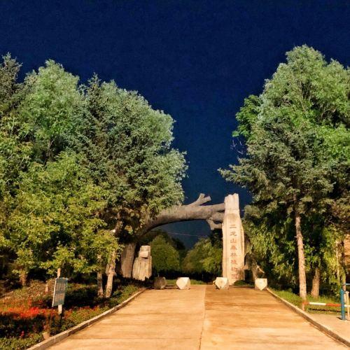 二龍山森林植物園