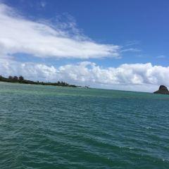 Ulua Beach User Photo