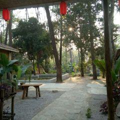 Junwu Forest Park User Photo