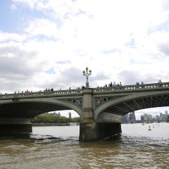 Thames River Cruise User Photo