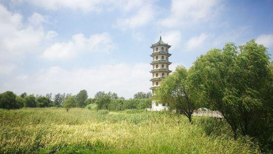 Dazonghuzhen Cultural Plaza