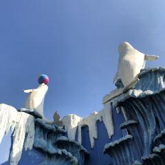 항저우 창치아오 극지해양공원 여행 사진