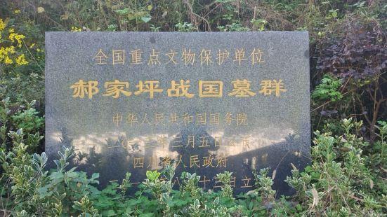 하오자핑 전국 고분군