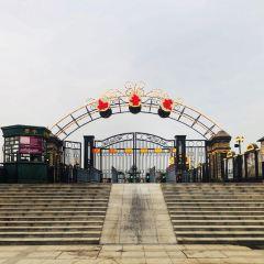 Zhiyin Cruise Ship User Photo