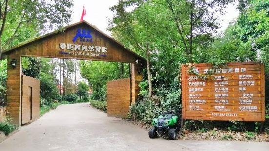 零距離自然營地