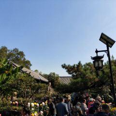 Wang Xuetao Memorial Hall User Photo