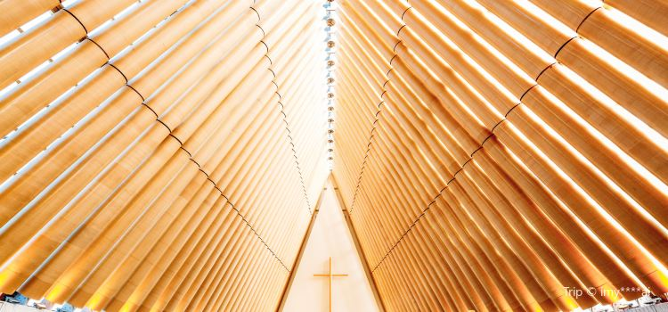 Christchurch Transitional Cathedral1