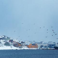 North Cape User Photo
