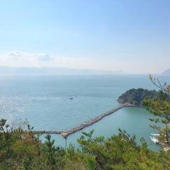 나오시마조 여행 사진
