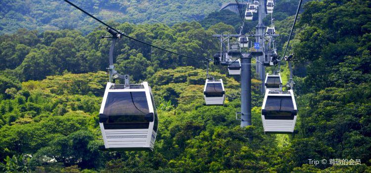 Maokong Gondola | Tickets, Deals, Reviews, Family Holidays