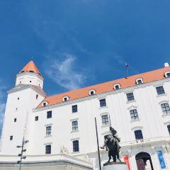 Bratislava Castle用戶圖片