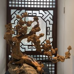 China Meihua Art Gallery User Photo