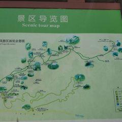 푸가이 산 여행 사진