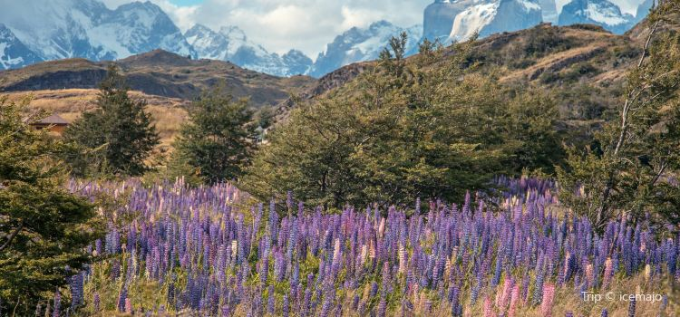 Torres del Paine National Park2