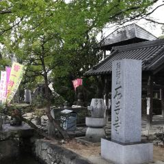 Ishiteji User Photo