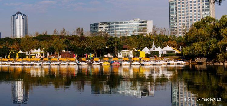 Century Park2