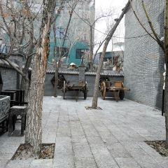 新疆古生態園用戶圖片