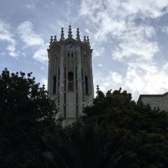 The University of Auckland User Photo