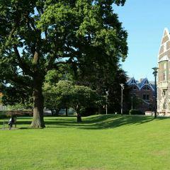 University of Otago User Photo