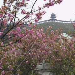 梅嶺太陽谷用戶圖片
