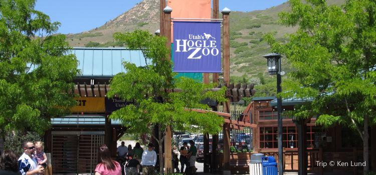 Utah's Hogle Zoo2