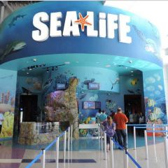 SEA LIFE Orlando Aquarium User Photo