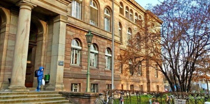 哥廷根大學1