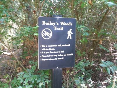 Bailey's Woods Trail