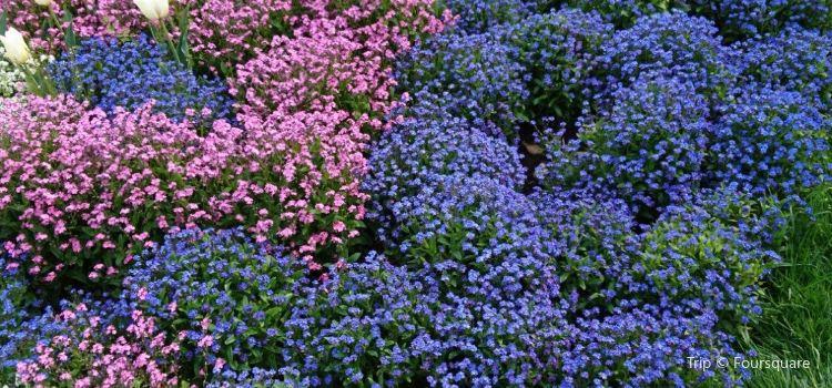 Botanischer Garten - Japan Garten3