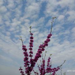 화하이낙원 여행 사진