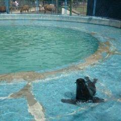 Lujan Zoo User Photo