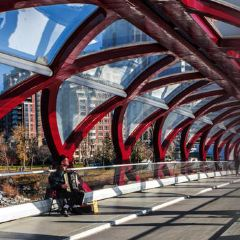 Peace Bridge User Photo