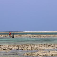 Diani Beach User Photo