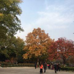 Baoji Yuanlin Botanical Garden User Photo